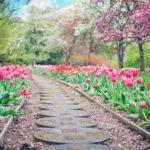 Piękny oraz czysty ogród to zasługa wielu godzin spędzonych  w jego zaciszu w trakcie jego pielegnacji.